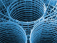 Stainless Steel Reinforcement